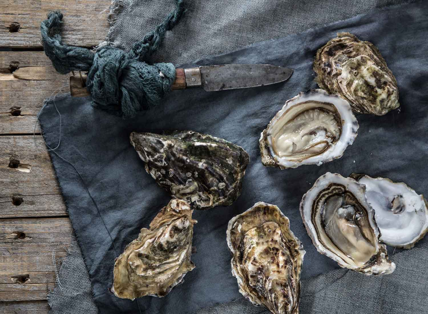 oysters laid on top of a blue linen cloth