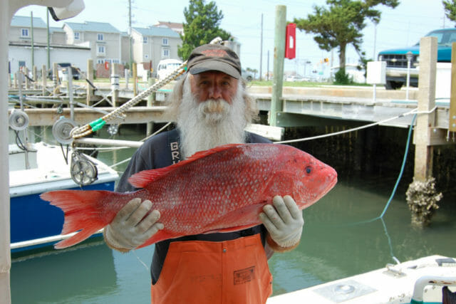 Commercial fisherman holding local seafood
